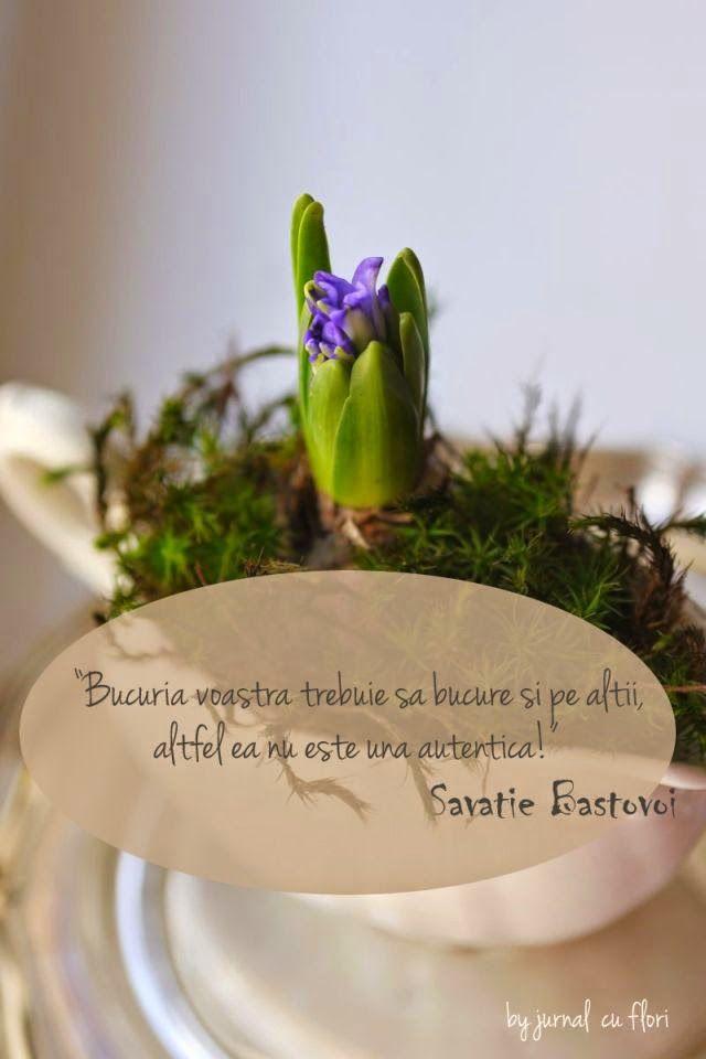 """citat din P. Savatie Bastovoi despre bucurie """"Bucuria voastra trebuie sa bucure si pe altii altfel ea nu este una autentica"""""""