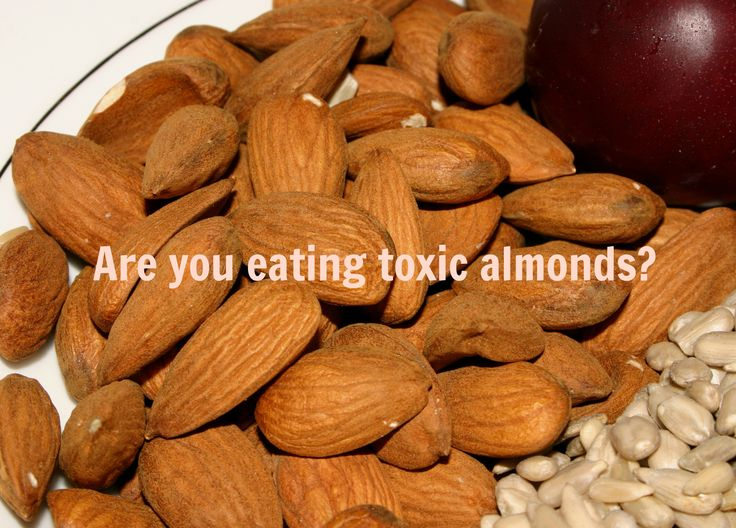 I love almonds. Don't we all? When I decided to start living a healthy lifestyle six years ago I started eating nuts and not just any nut…raw, organic, almonds. I'd order them by the five-pound case from our local food co-op and I'd make all sorts of raw creations from smoothies to flour. Back then, …