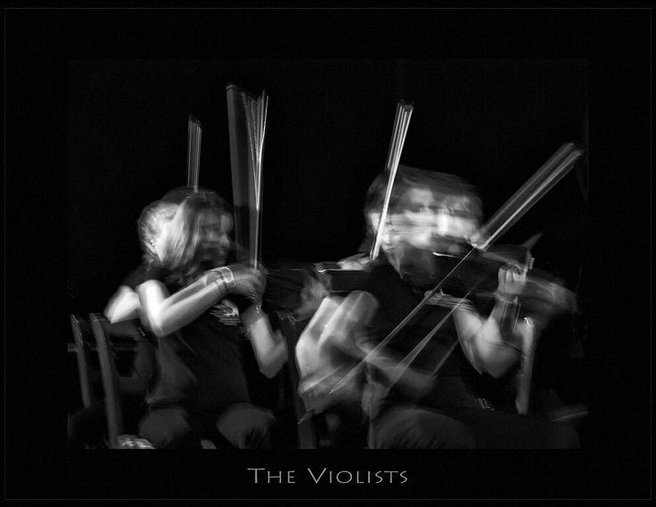 THE VIOLISTS