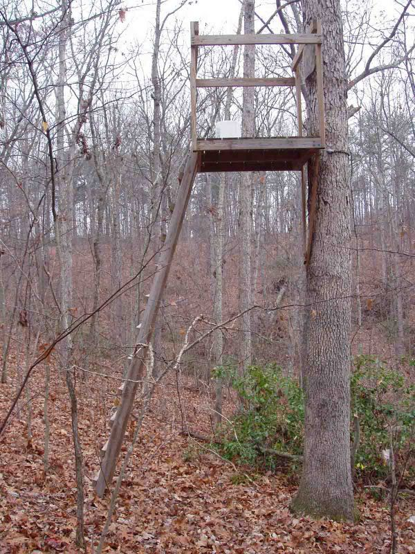 It used to be that if you wanted to do some serious deer hunting, you did it from a tree stand. Description from guns.com. I searched for this on bing.com/images