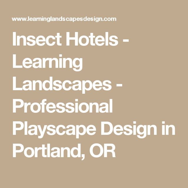 Insect Hotels - Learning Landscapes - Professional Playscape Design in Portland, OR