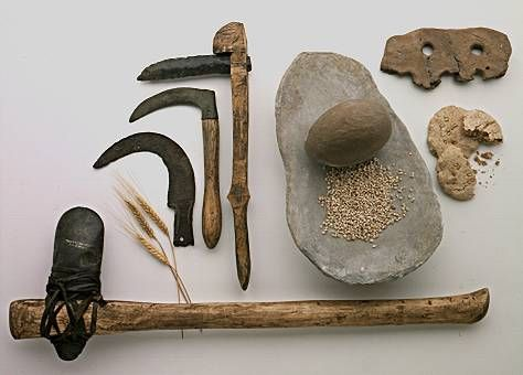 Flint sickles, flat grinding stone, stone ax with wooden handle - Neolithic agricultural tools