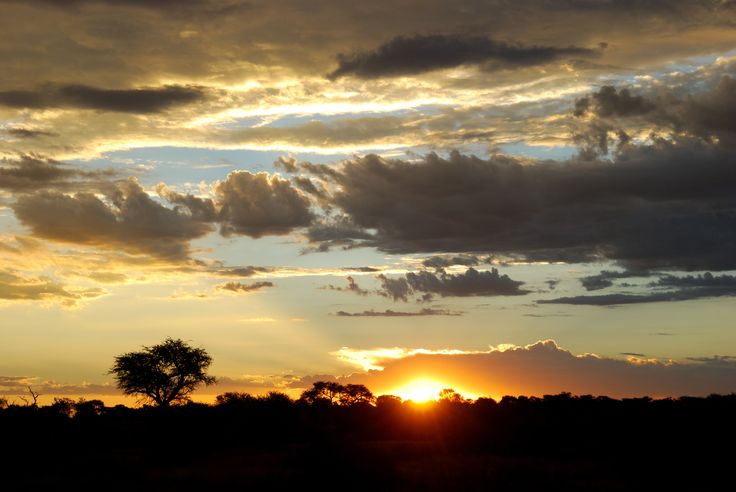 Sunset in the Kalahari, Botswana.