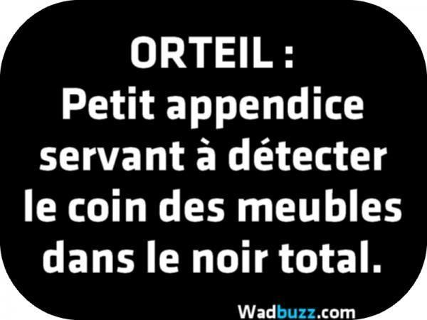 Orteil :