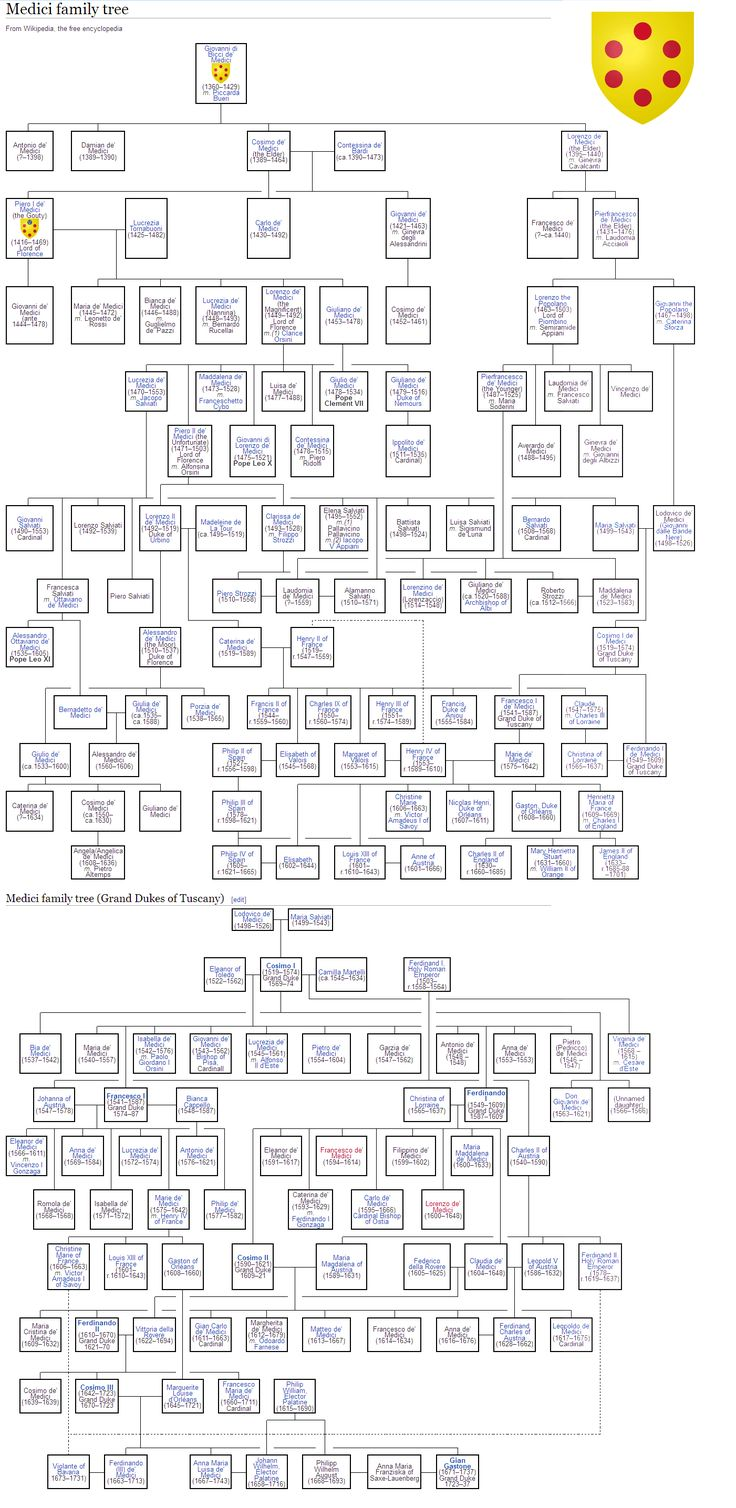 The Medici Genealogical Tree - Florence
