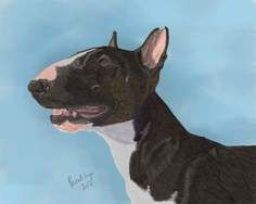 Bullterrier dog portrait - digital art created by Paintchya.com , digital paintings start from $35 for an A6 image, order paintchya@gmail.com or via etsy:  etsy.com/ie/shop/Paintchya