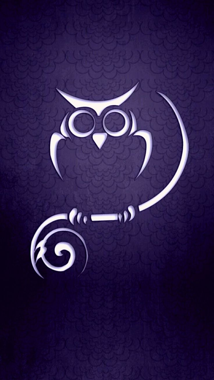 The 285 best corujas iv images on pinterest owls owl and cute owl owl wallpaper for iphone voltagebd Images