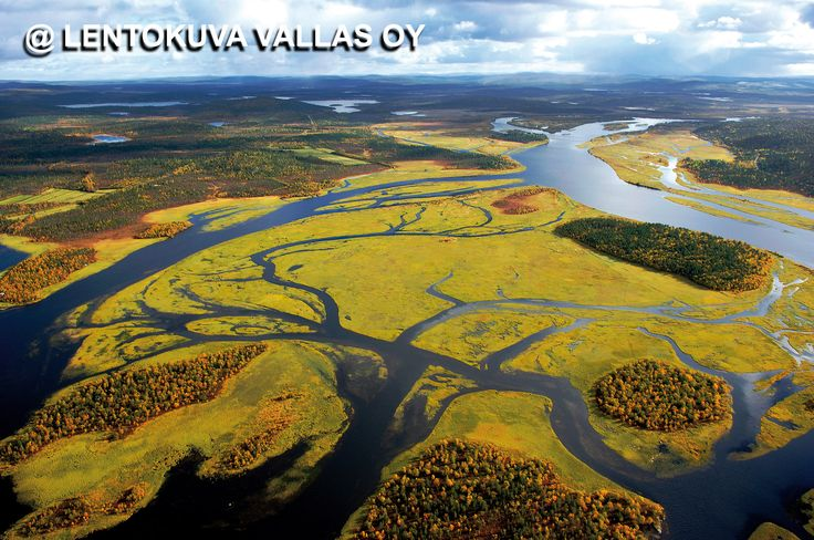 Inari, syksyinen jokisuisto Ilmakuva: Lentokuva Vallas Oy