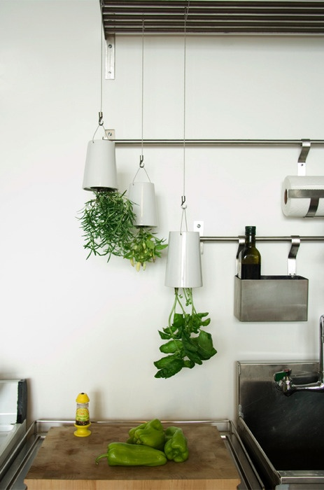 Indoor herb garden. Each Sky Planter Ceramic artefact uses Slo-flo irrigation technology.
