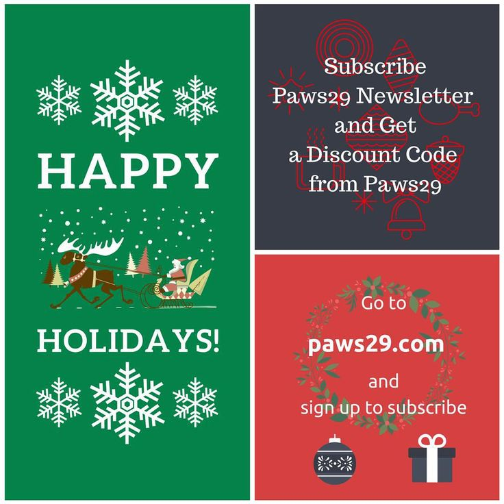 Merry Christmas everyone!! We will send a discount code as our gift to our subscriber on 25th December. Please go to paws29.com and sign up to subscribe:) #paws29 #paws29furry #dog#petlover#petowner#christmas#X'mas#gift#subscribeus#paws29.com#happyholidays#discount#クリスマス#愛犬家#いぬら部#ワンコ#聖誕節#狗狗#happy#love