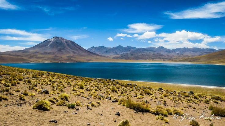 Laguna Miscanti: ubicada en el Altiplano de la región de Antofagasta, en el norte de Chile.