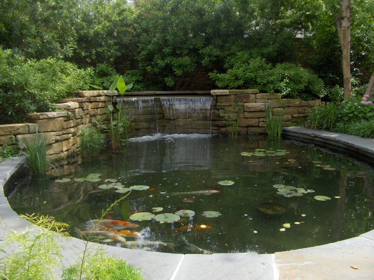 376 best small fish ponds images on pinterest backyard for Small pond construction