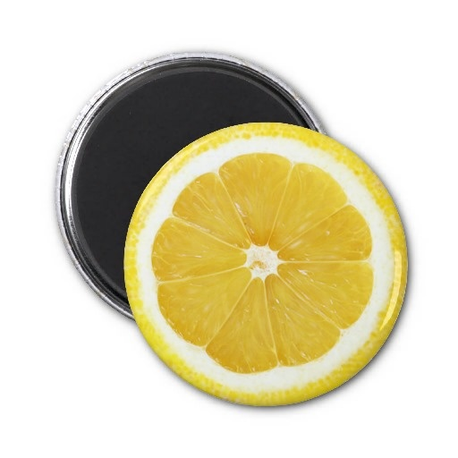 Fruit Magnet Series -Lemon-