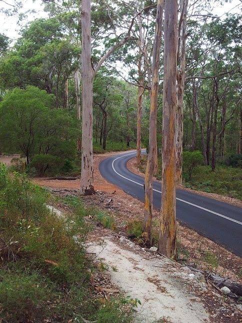 Caves Rd, South West of Western Australia