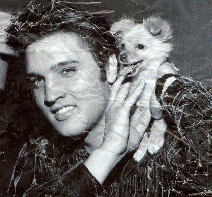 Elvis Rare Photo - Elvis Presley Photo (21118346) - Fanpop