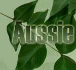 Gardening in Australia - helpful directory