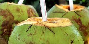 12 Benefits of Organic Coconut Water-12 Voordelen Van Biologisch Kokoswater-translate present