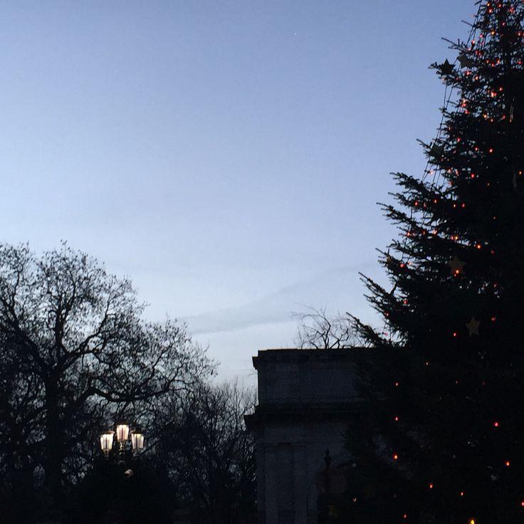 Winter Sun, Dublin