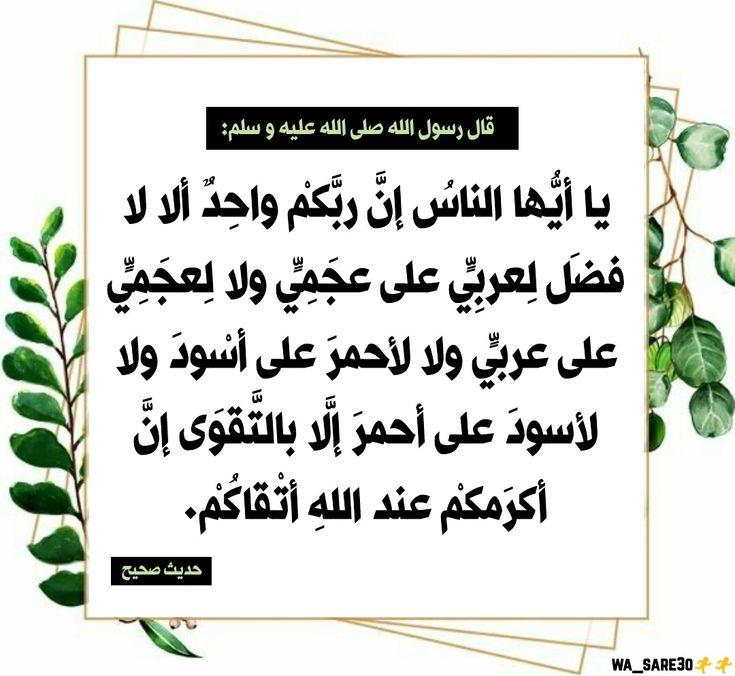 يا أيها الناس إن ربكم واحد ألا لا فضل لعربي على عجمي Instagram Lettering Photo And Video