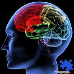 Entender mejor las manifestaciones clínicas de la demencia