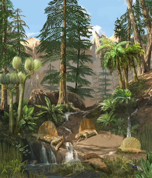 Scene from Permian period, when climate turned cool and dry and ...