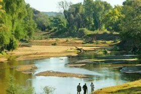 Pafuri camp. Kruger National Park.