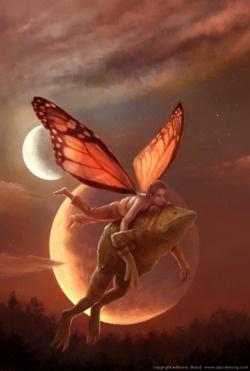 Frogs love fairies tooooooooo