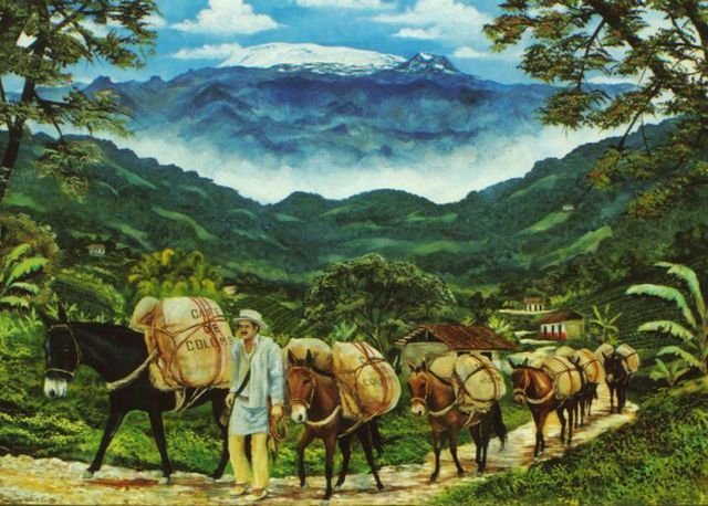 paisajes colombianos - Buscar con Google
