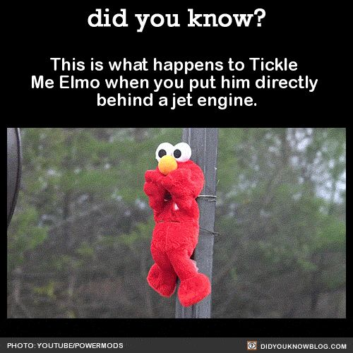 This is what happens to Tickle Me Elmo when you put him directly behind a jet engine. Source WHOA! ~WHY Would You Do That?