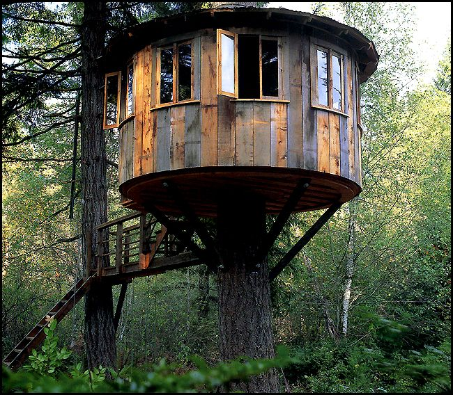 treehouses by Pete Nelson  | Interview with Pete Nelson of Animal Planet's Treehouse Masters ...