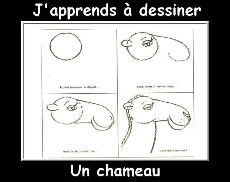 j'apprendre a dessiner chameau