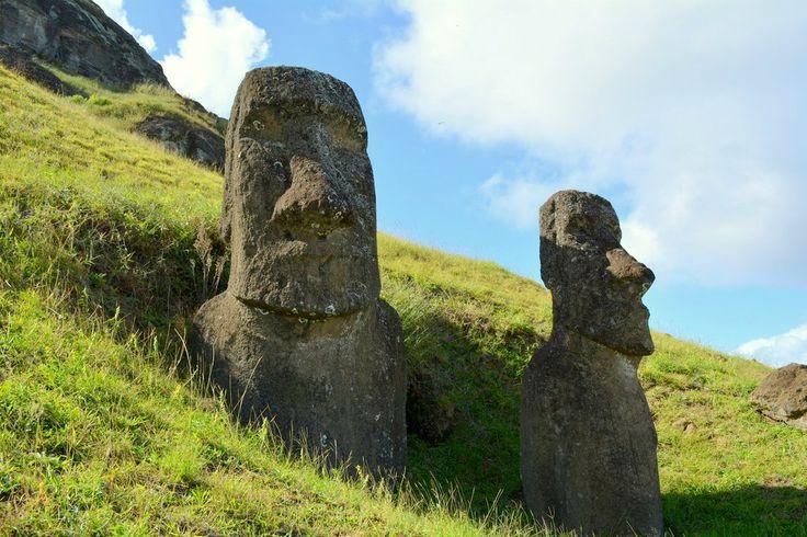 Muchos de los moai (esculturas de piedra gigantescas) que están hoy en el volcán Rano Raraku, que sirvió de cantera, se encuentran enterradas, con el cuerpo cubierto, por eso durante mucho tiempo se pensó que eran sólo cabezas gigantes