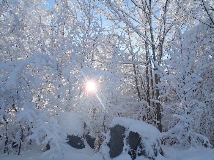 Winter in The Czech Republic