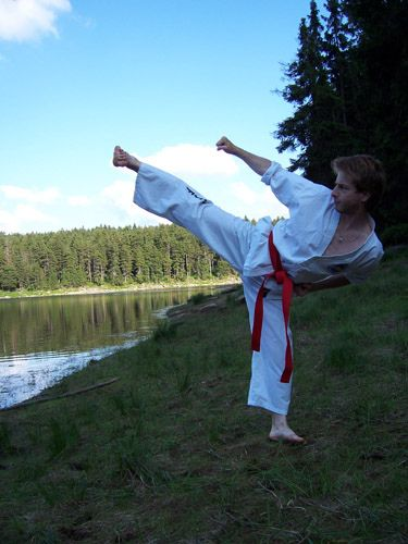https://flic.kr/p/38K6vH | Kicking in Harz | Harz mountains, Germany summer 2005 #taekwondo #martialarts #santiagopinto #kick #blackbelt #태권도