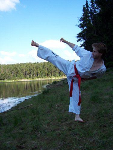 https://flic.kr/p/38K6vH | Kicking in Harz | Harz mountains, Germany summer 2005 #taekwondo #martialarts #santiagopinto #kick #blackbelt #태권도