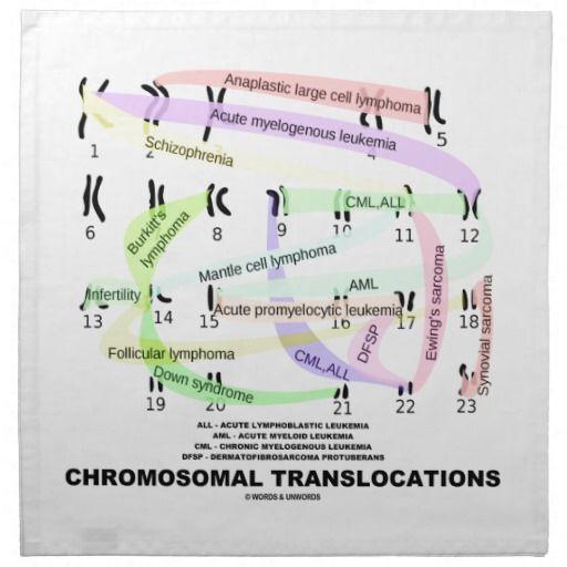 Chromosomal Translocations (Karyogram) Printed Napkin #chromosomal #translocations #karyogram #genetics #chromosomes #health #medicine #wordsandunwords