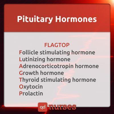 pituitaryhormone.jpg