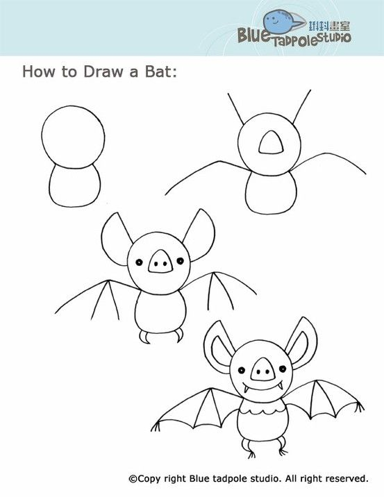 How To Draw Bat Blue Tadpole Studio