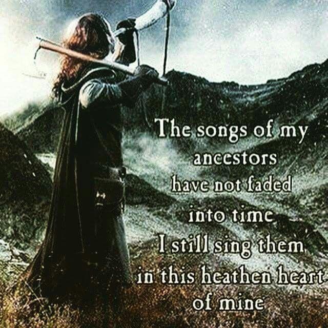 Viking                                                                                                                                                                                 More