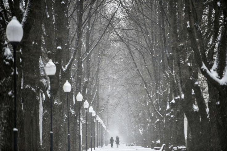 Casal passeia por parque congelado em Moscou. Temperatura atingiu -1 °C na capital da Rússia nesta terça-feira (1°) - http://epoca.globo.com/tempo/fotos/2014/04/fotos-do-dia-1-de-abril-de-2014.html (Foto: AP Photo/Vadim Belkin)