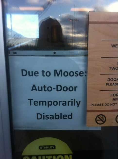 This sign which blames everything on Moose. | 19 Signs That Owe The World An Explanation<--What did you do, Sam?