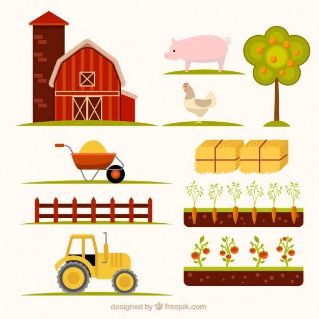 elementos agrícolas essencial desenhados mão Vetor grátis