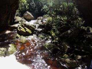 RIVER ADVENTURE in the Crags, Plettenberg Bay - Kloofing / Canyoning