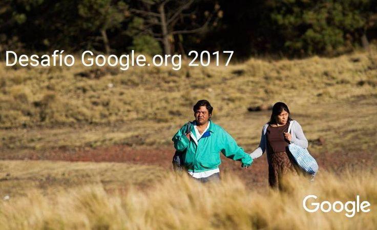 Tres ONG argentinas ganaron más de un millón de dólares por innovar con impacto social - Los Andes (Argentina)