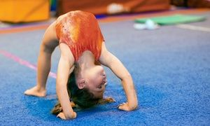 Groupon - Gymnastics & Tumbling or Homeschool Fitness Classes at Platinum Gymnastics Academy (Up to 62% Off). Three Options.  in Park At Grand Avenue. Groupon deal price: $39