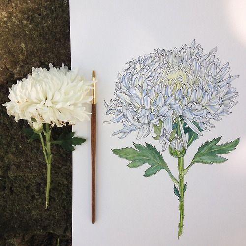 & more https://fr.pinterest.com/miaprimeau/ #art #draw #flower
