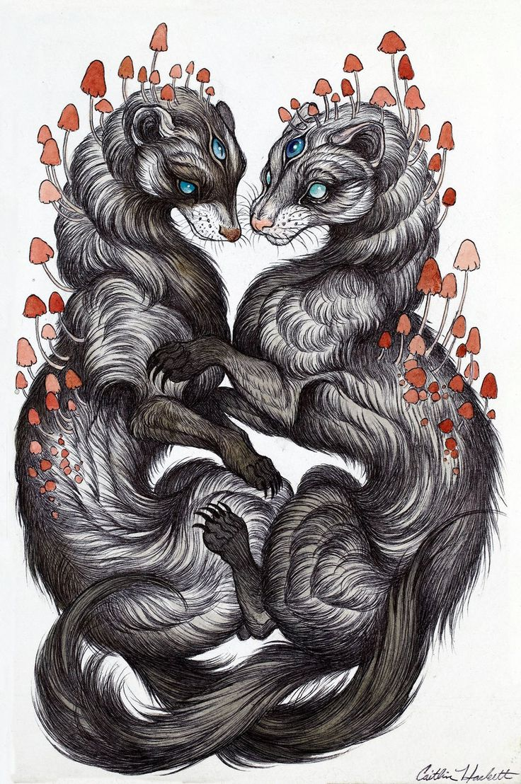 a portrait of the client's ferrets 2014 by Caitlin Hackett