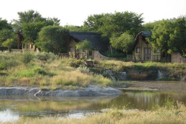 Tau Game Lodge is the ideal retreat not only for romantic getaway, but also for families who wish to fall in love with Africa.