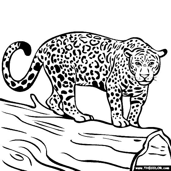 jaguar e type coloring pages - photo#23