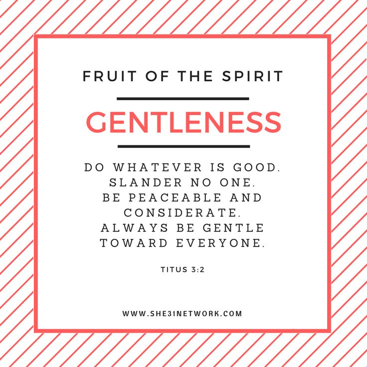 Grow in the FRUIT of the Spirit by inviting Him to work through your life - from the inside out! Faithfulness, gentleness, goodness, joy, kindness, love, patience, peace and self-control are all your through Christ! Join our wonderful study on the Fruit of the Spirit - Study Workbook also available!